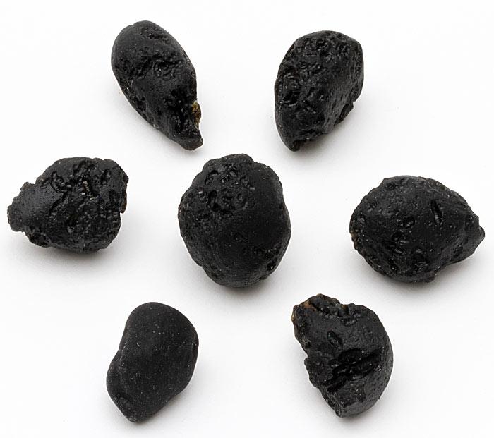 seven pieces of tektite